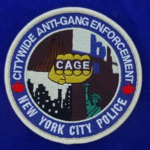 NY Police Patch #02